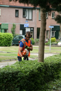 SIGHT in actie